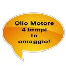 Trinciaerba Falciatutto EUROSYSTEMS MNF M502 - con Retromarcia - Motore a scoppio a benzina B&S 625 da 190 cc- Made In Italy
