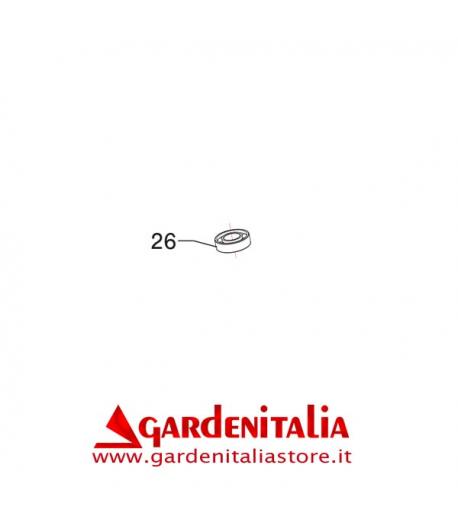 Cuscinetto 6004-2RS1 per P 70 EVO Eurosystems