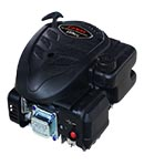 Motore Loncin 123 cc